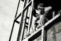 Роман Митин, 19 июля 1987, Челябинск, id45056215